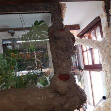 Iguana Anlage - Vorbereitungen