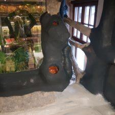 Iguana Anlage